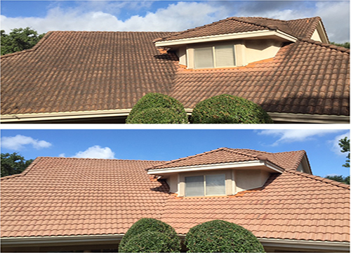 Low Pressure Roof Cleaning Portland OR