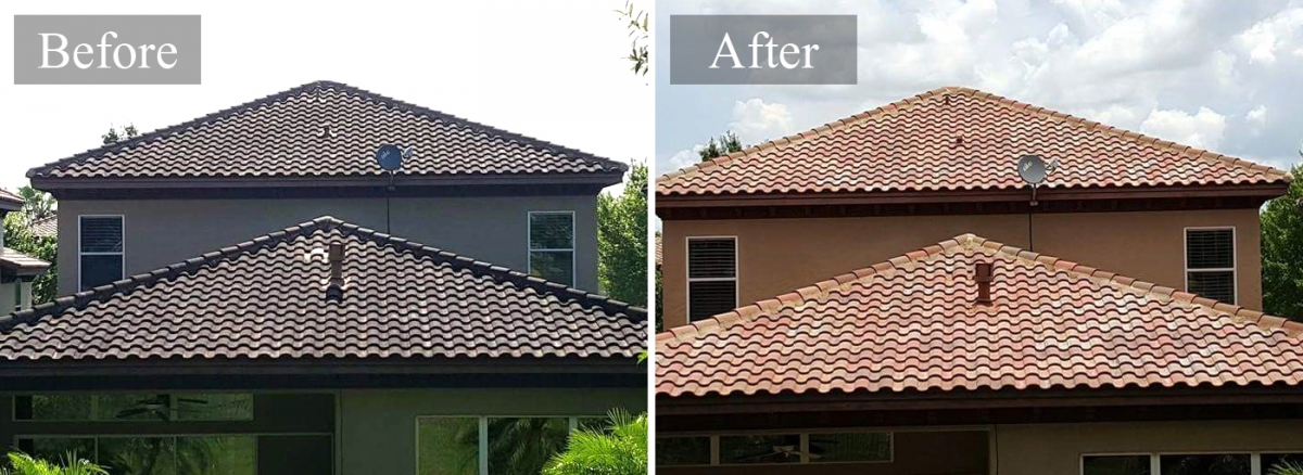 Roof Cleaning Services In Portland Oregon
